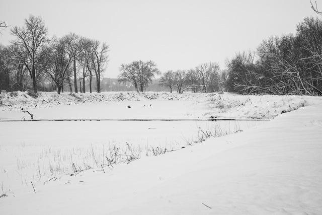 The river in snow