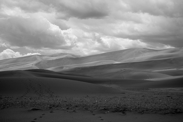 The dunes in black & white